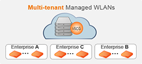 This product, known as the vSCG, can support multi-tenant environments where many managed services customers share an instance of the vSCG, or in a dedicated mode